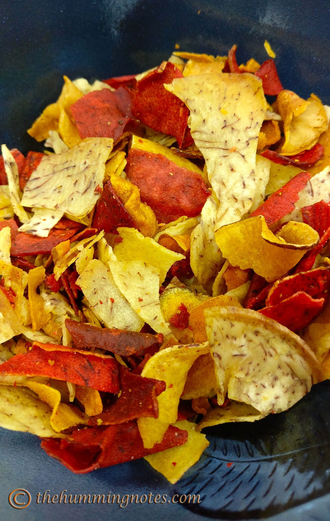 The Original Vegetable Terra Chips