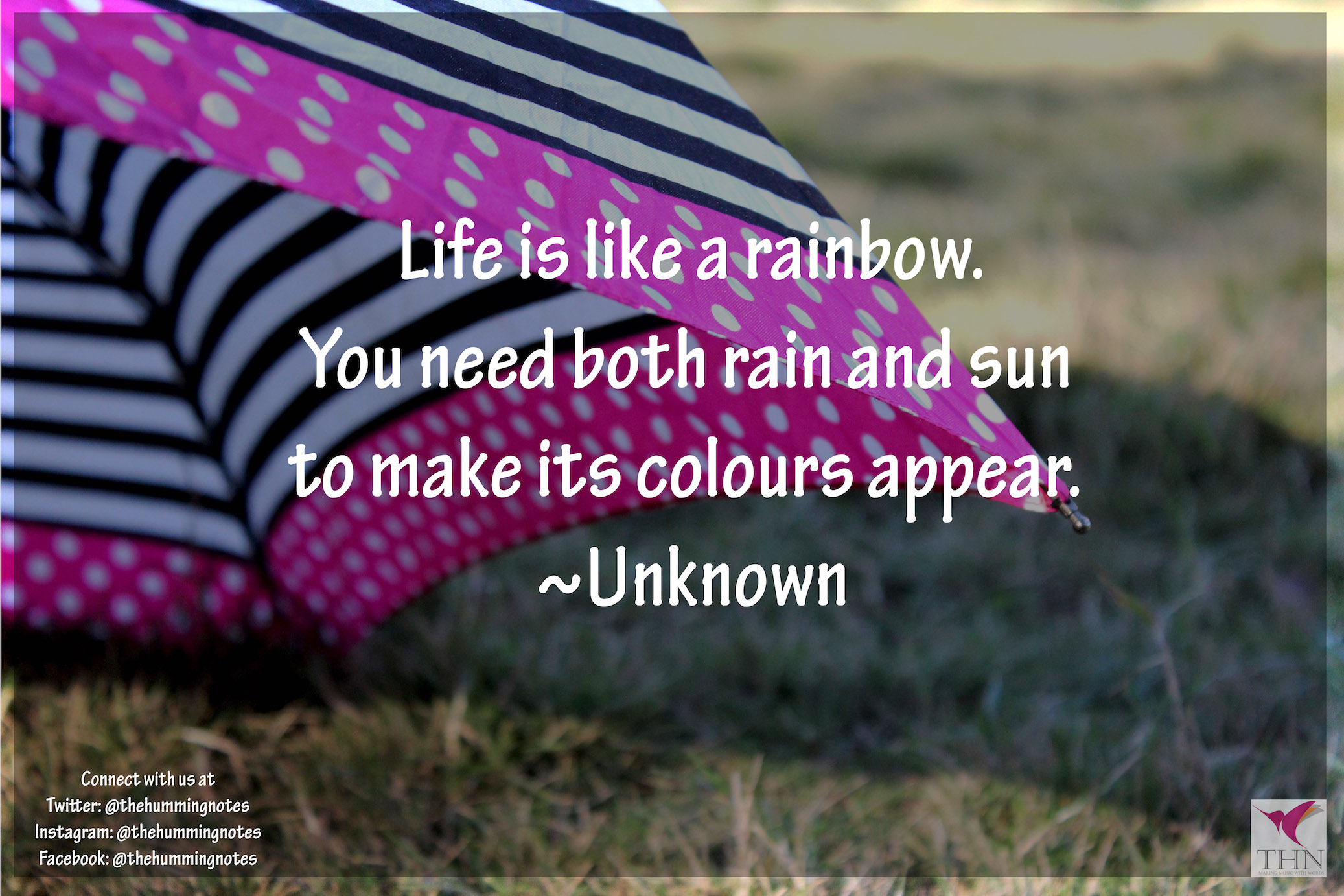 10 Quotes To Make Your Life A Bit Colourful The Humming Notes